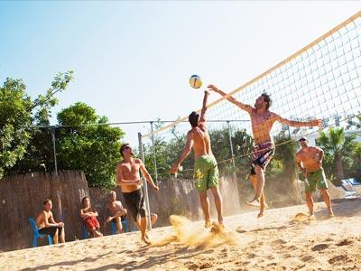 pavlinia-volleyball